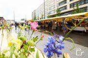 FOOBY-Food-Zurich-19-web-pls24.ch-DSC53