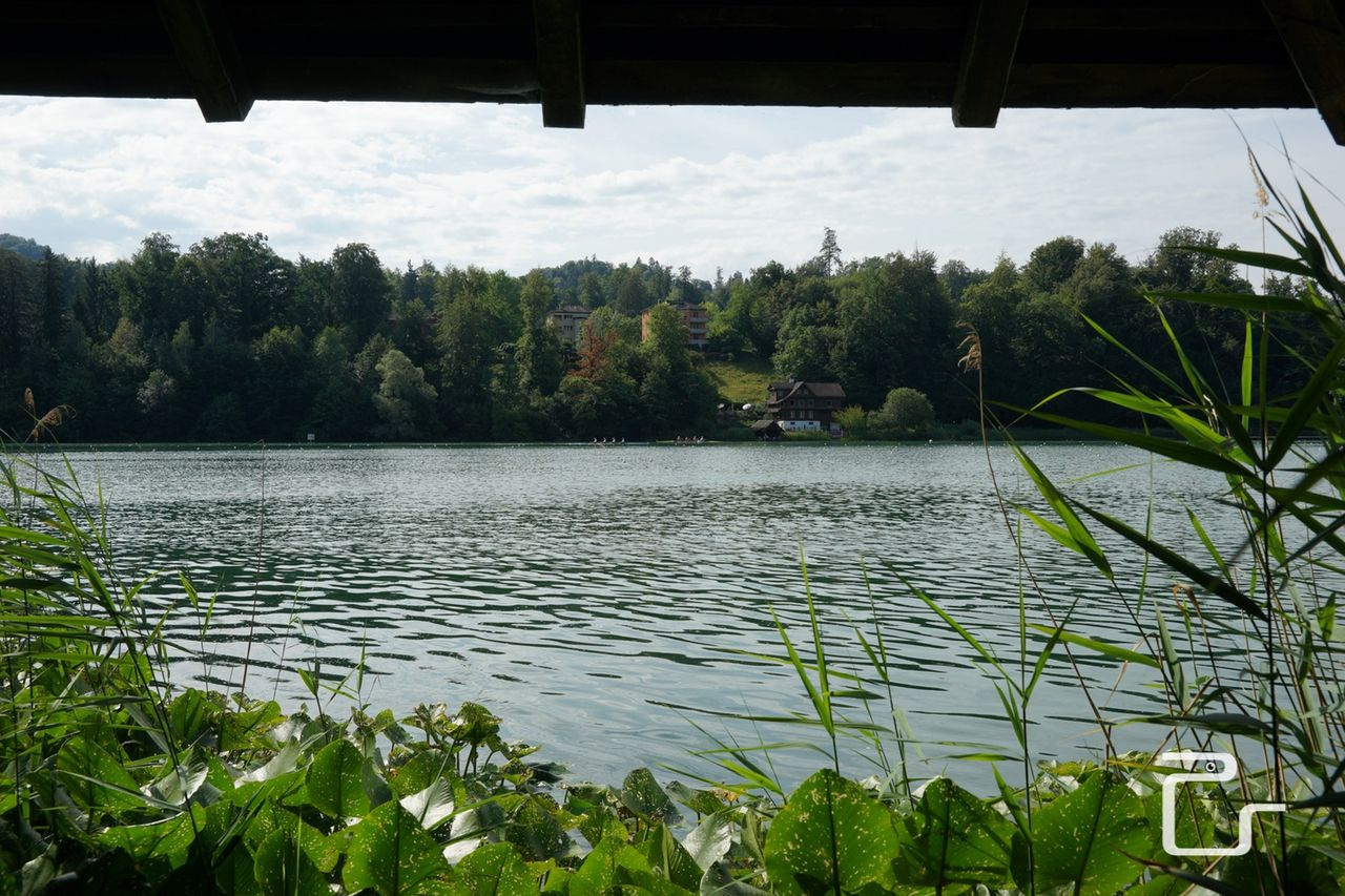 Lucerne-Regatta-18-web-pls24.ch-DSC87