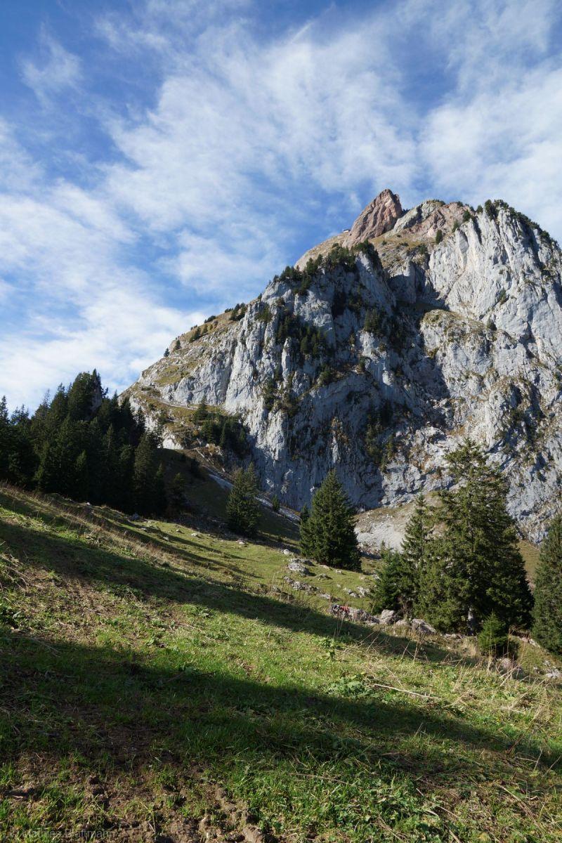 Berg-mit-Wiese