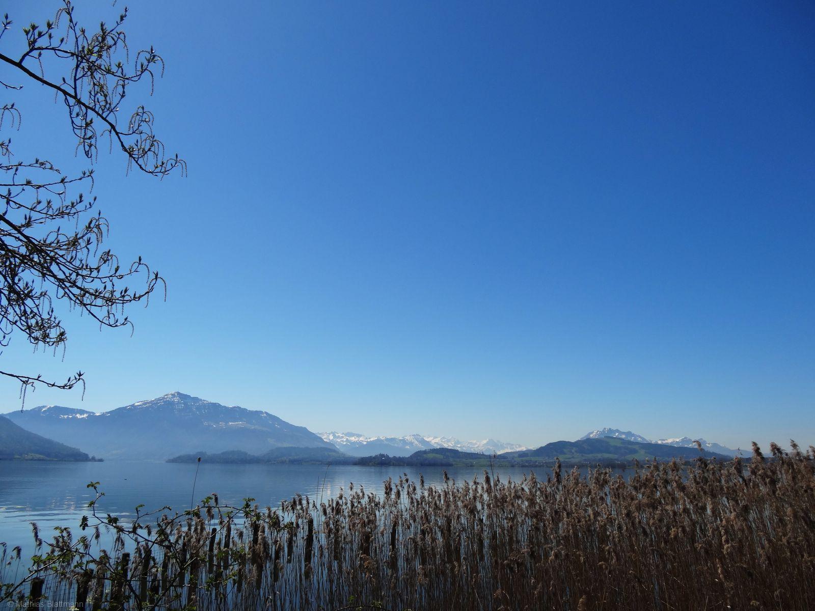 Schilf-See-Himmel