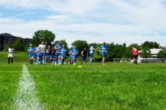 pls24.ch-rugby-gc-zuerich-lugano-NLA-2016-DSC1