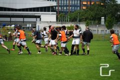 pls24.ch-rugby-gc-zuerich-lugano-NLA-2016-DSC24