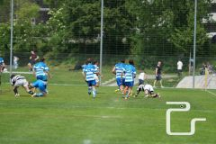 pls24.ch-rugby-gc-zuerich-lugano-NLA-2016-DSC78